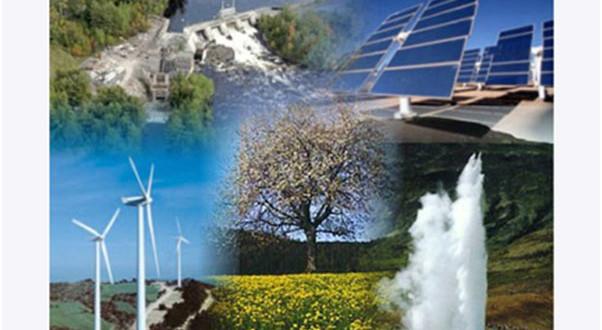 """Los productores isleños de renovables auguran """"desahucios"""" de fincas este año"""