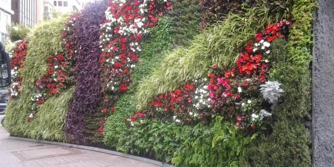 La Comunidad Verde apoya la iniciativa de solicitar una normativa que imponga cubiertas verdes en nuevas construcciones