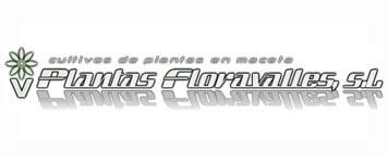 Plantas floravalles