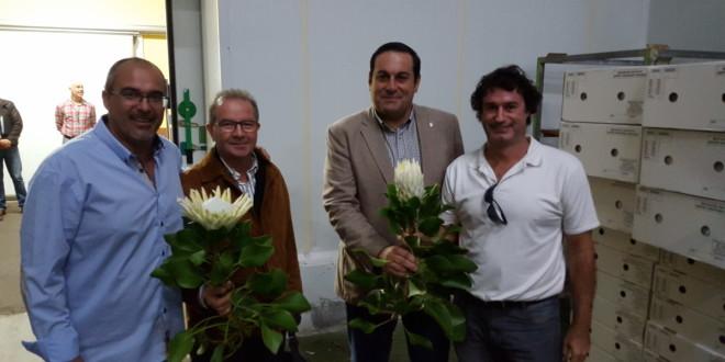 ASOCAN celebra su Junta Directiva con Proteas de La Palma