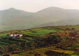 Canarias es una de las pocas regiones en las que crece la población rural