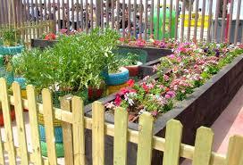 Los beneficios pedagógicos de los jardines y huertos escolares