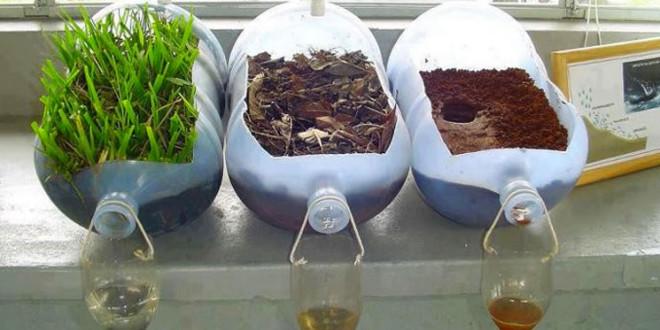 La importancia de la vegetación
