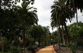 Los parques y jardines ganan casi 5.000 árboles nuevos en dos años
