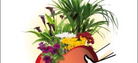 FLORES Y PLANTAS DE CANARIAS