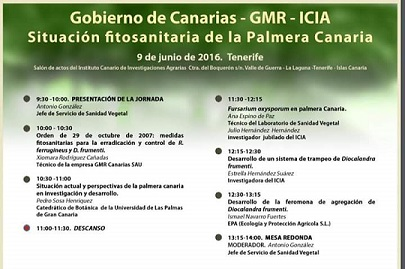 Jornada situación fitosanitaria de la Palmera Canaria