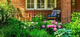 Calendario del jardín en julio