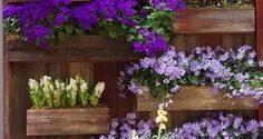 Poner tus plantas y flores en vertical