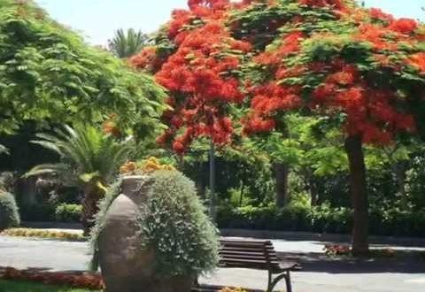La partida para mejorar los jardines de la ciudad crece en un millón de euros