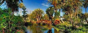 El Palmetum de S/C de Tenerife, mejor proyecto de jardinería pública de España
