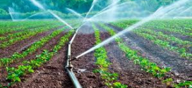 ASAMBLEA – REUTILIZACIÓN DEL AGUA PARA LA AGRICULTURA