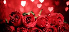 Flores en el día de San Valentín
