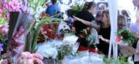 Los cosecheros de flores temen que una nueva ley dificulte la exportación