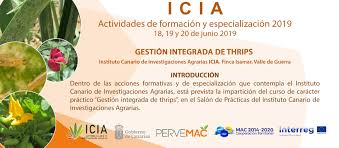 GESTION INTEGRADA DE THRIPS