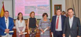 El Colegio de Ingenieros de Caminos premia al Cabildo de Tenerife por la mejora paisajística de las carreteras