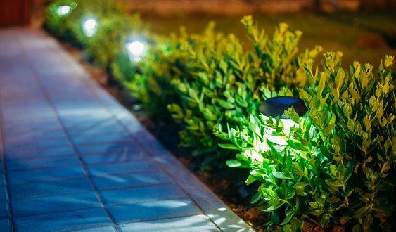 ¿Cómo podemos ahorrar luz en el jardín?