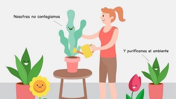 CONTRA EL COVID-19 ¡RODÉATE DE FLORES Y PLANTAS!