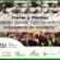 FLORES Y PLANTAS: ¿SALIENDO DEL ATOLLADERO?