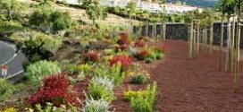 Adjudicados los contratos de mejora de las zonas verdes por 8,1 millones