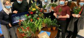 Campaña de apoyo al sector español de flores y plantas